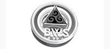BWS_1